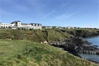 Pembrokeshire Coast & Tenby